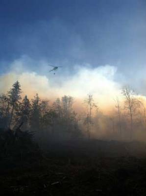 South Lane County Wildland Fires